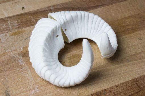 Small Ram Horns