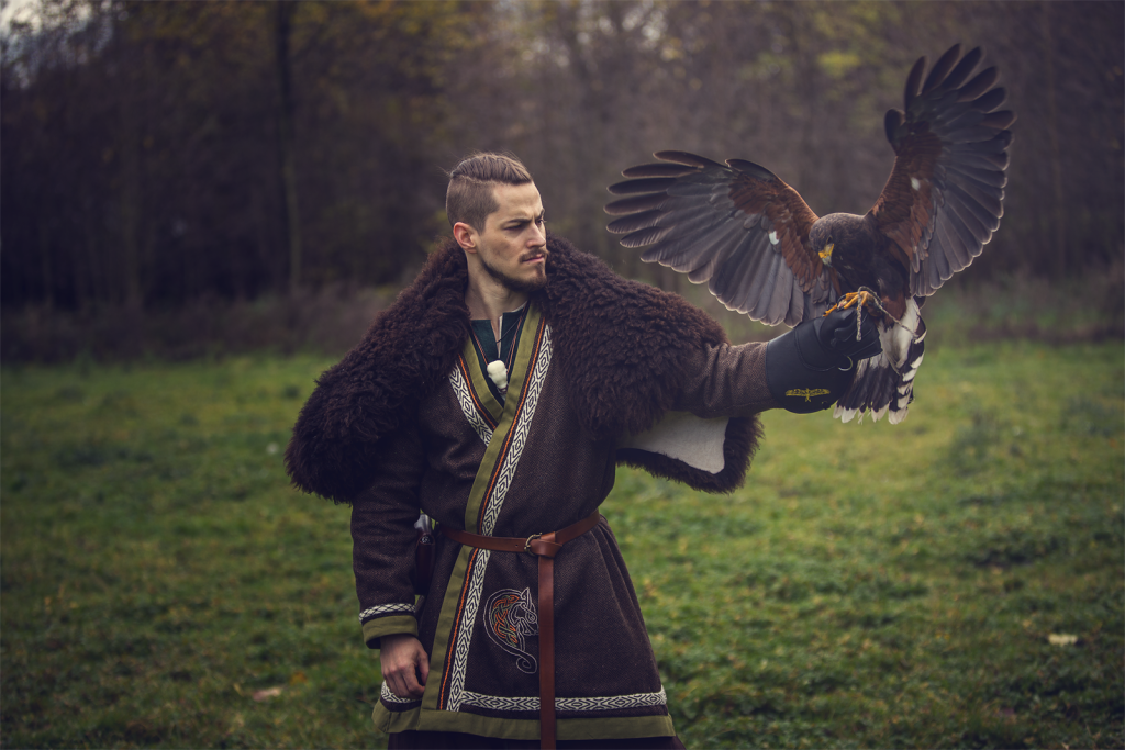 viking costume falcon
